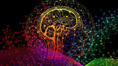 İtalya'da Psikoloji Eğitimi